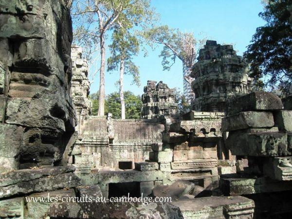 Temple Ta Phrom.temple Angkor 33